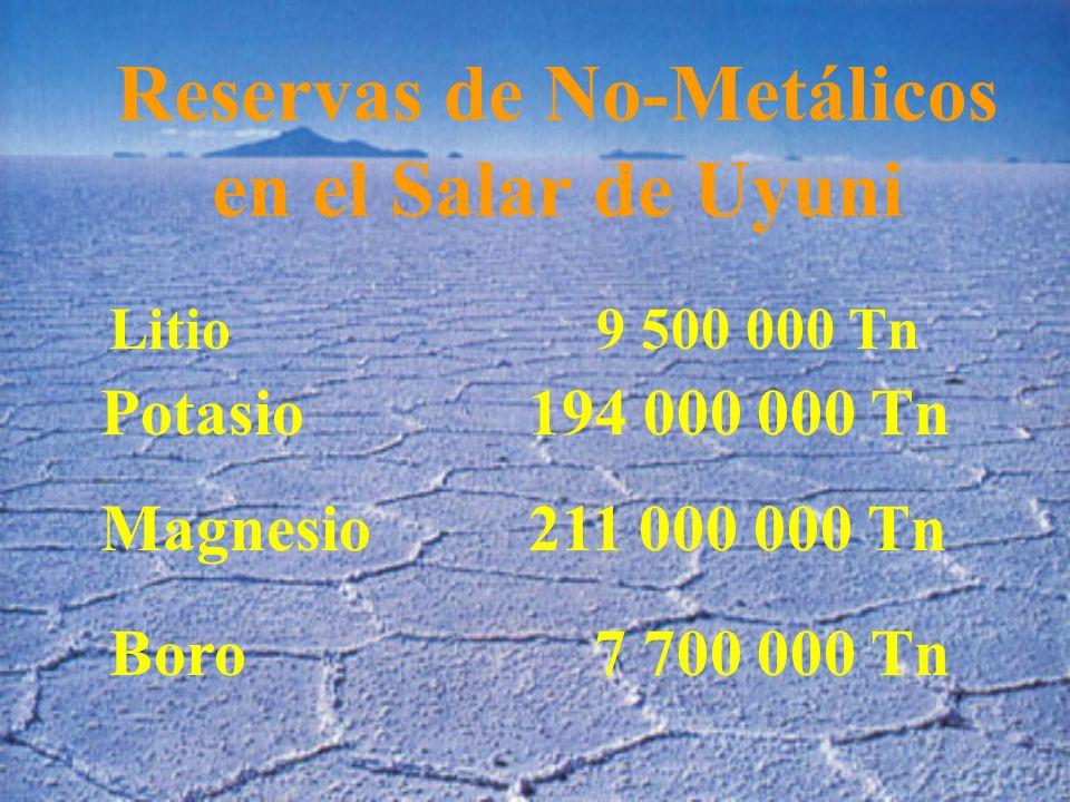 Reservas de No-Metálicos en el Salar de Uyuni Litio 9 500 000 Tn Potasio 194 000 000 Tn Magnesio 211 000 000 Tn Boro 7 700 000 Tn