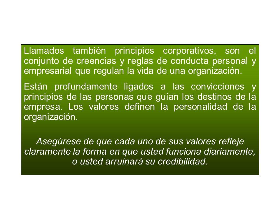 Llamados también principios corporativos, son el conjunto de creencias y reglas de conducta personal y empresarial que regulan la vida de una organización.