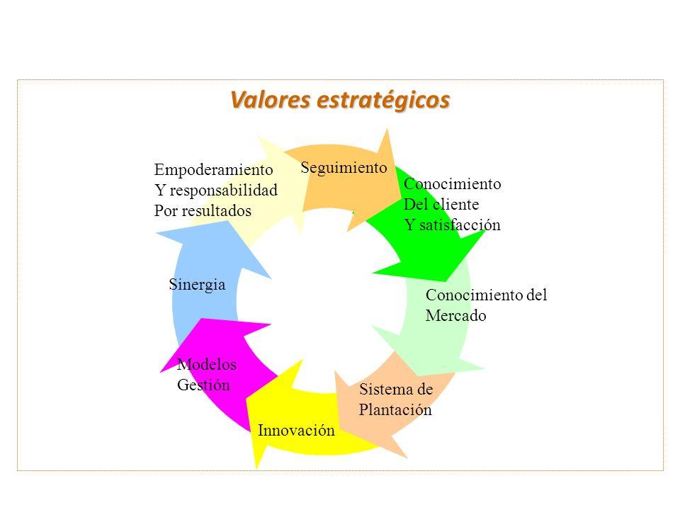 Valores estratégicos Empoderamiento Y responsabilidad Por resultados Sinergia Modelos Gestión Innovación Sistema de Plantación Conocimiento del Mercad