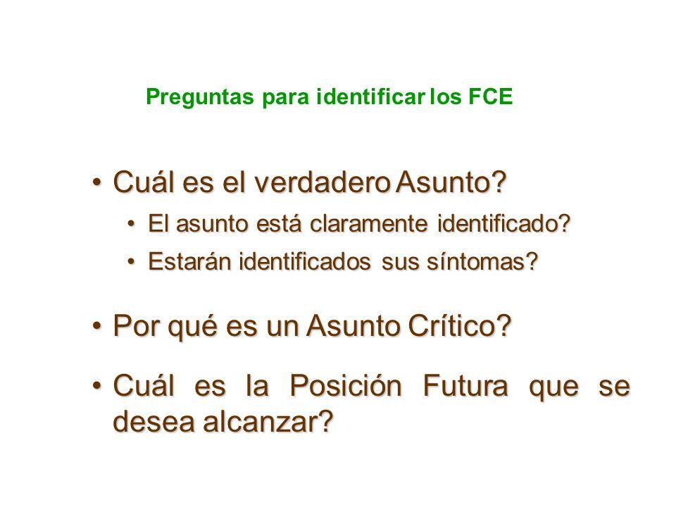 Preguntas para identificar los FCE Cuál es el verdadero Asunto?Cuál es el verdadero Asunto? El asunto está claramente identificado?El asunto está clar
