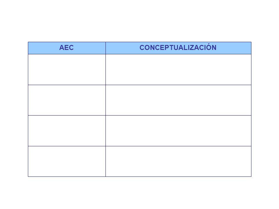 Áreas estratégicas claves generales y por macroproceso AECCONCEPTUALIZACIÓN