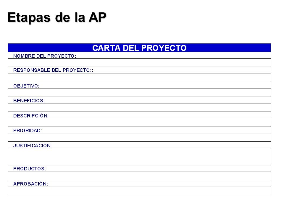 Etapas de la AP