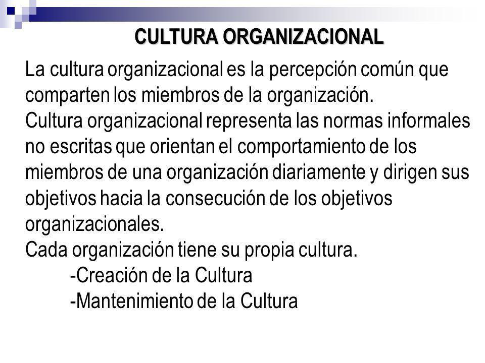 CULTURA ORGANIZACIONAL La cultura organizacional es la percepción común que comparten los miembros de la organización. Cultura organizacional represen