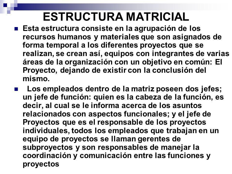 ESTRUCTURA MATRICIAL Esta estructura consiste en la agrupación de los recursos humanos y materiales que son asignados de forma temporal a los diferent