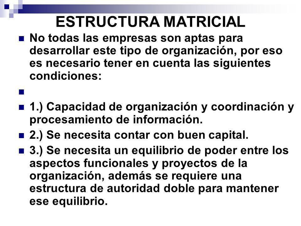 ESTRUCTURA MATRICIAL No todas las empresas son aptas para desarrollar este tipo de organización, por eso es necesario tener en cuenta las siguientes c