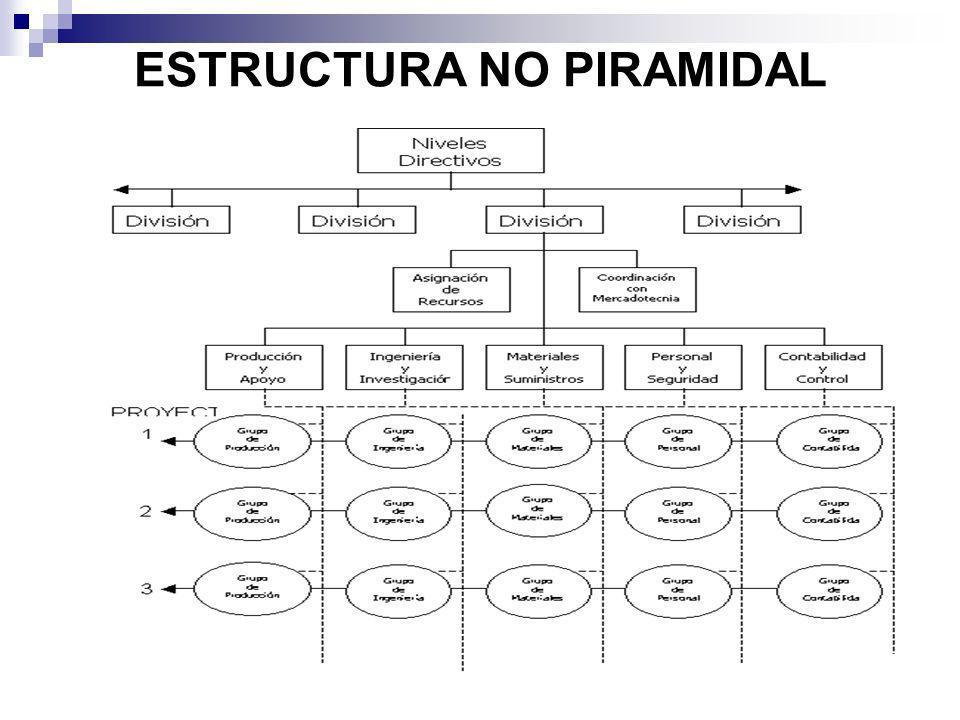 ESTRUCTURA NO PIRAMIDAL