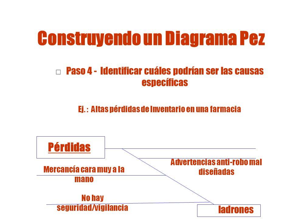 Construyendo un Diagrama Pez Ej.