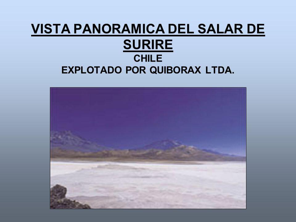 VISTA PANORAMICA DEL SALAR DE SURIRE CHILE EXPLOTADO POR QUIBORAX LTDA.