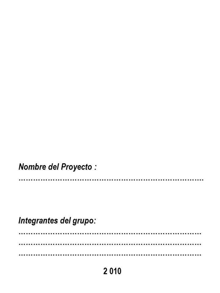Nombre del Proyecto : ………………………………………………………………….