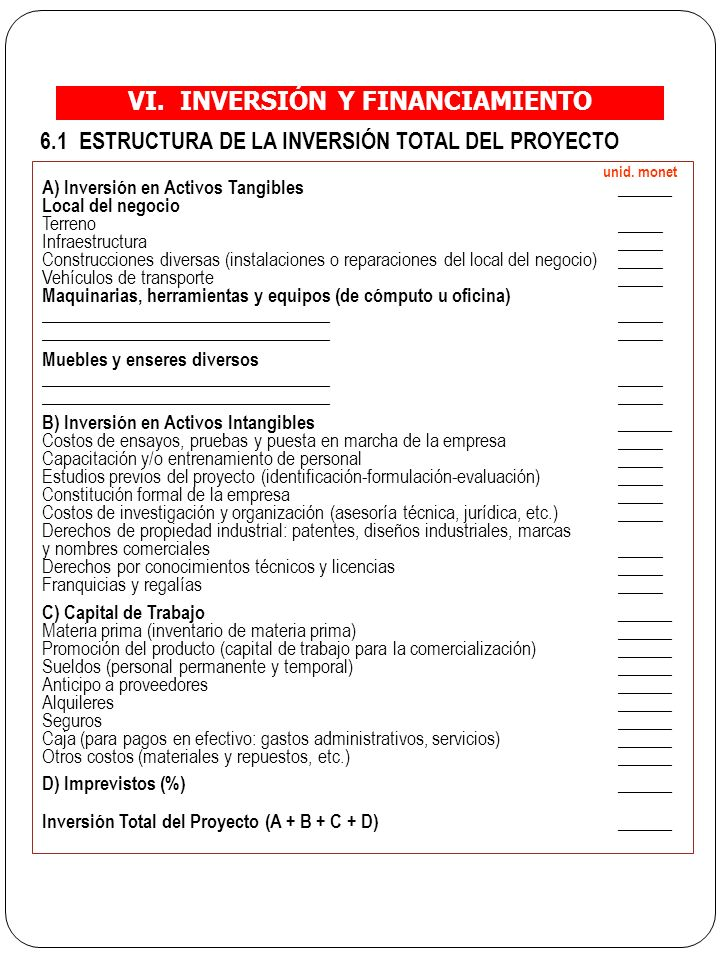 VI.INVERSIÓN Y FINANCIAMIENTO 6.1 ESTRUCTURA DE LA INVERSIÓN TOTAL DEL PROYECTO unid.