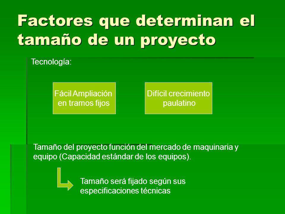 Factores que determinan el tamaño de un proyecto Tecnología: Fácil Ampliación en tramos fijos Difícil crecimiento paulatino Tamaño del proyecto funció