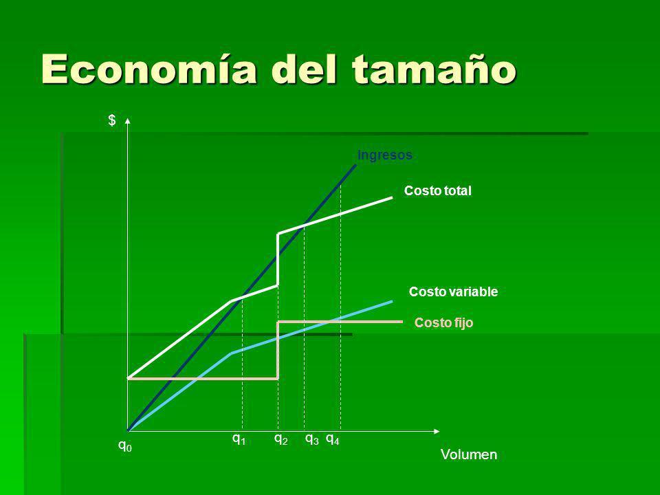 Economía del tamaño $ Volumen q1q1 q2q2 q3q3 q4q4 q0q0 Costo variable Ingresos Costo fijo Costo total