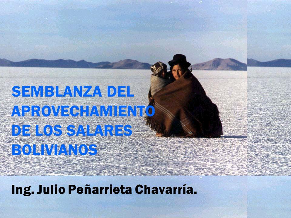 SEMBLANZA DEL APROVECHAMIENTO DE LOS SALARES BOLIVIANOS Ing. Julio Peñarrieta Chavarría.