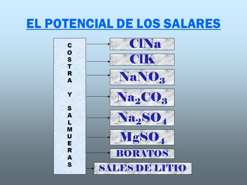 EL POTENCIAL DE LOS SALARES ClNa ClK NaNO 3 Na 2 CO 3 Na 2 SO 4 BORATOS MgSO 4 SALES DE LITIO COSTRAYSALMUERASCOSTRAYSALMUERAS