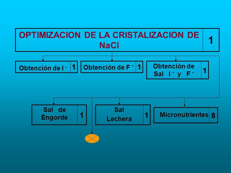 OPTIMIZACION DE LA CRISTALIZACION DE NaCl 1 1 Obtención de I - 1 Obtención de F - 1 Obtención de Sal I - y F - 1 Sal Lechera 1 Sal de Engorde 8 Micron