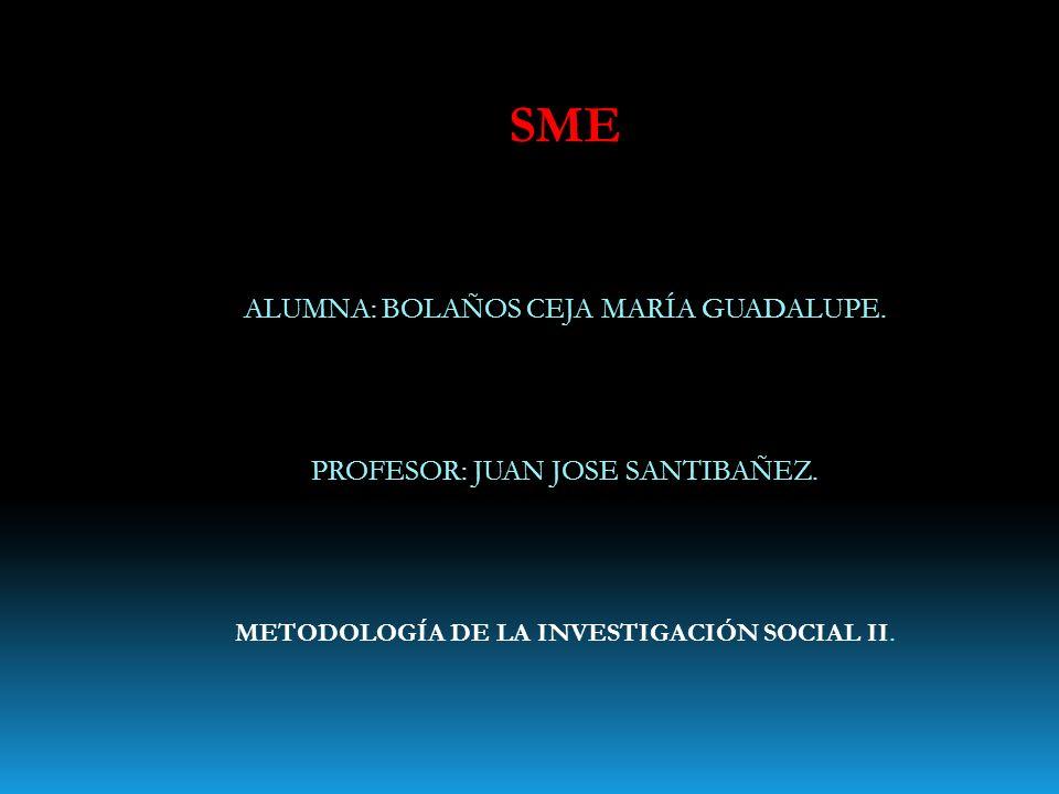 SME ALUMNA: BOLAÑOS CEJA MARÍA GUADALUPE. PROFESOR: JUAN JOSE SANTIBAÑEZ. METODOLOGÍA DE LA INVESTIGACIÓN SOCIAL II.