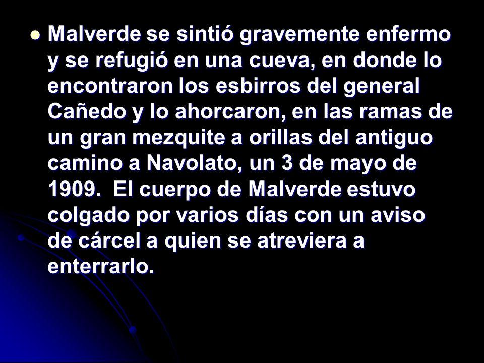 Malverde se sintió gravemente enfermo y se refugió en una cueva, en donde lo encontraron los esbirros del general Cañedo y lo ahorcaron, en las ramas