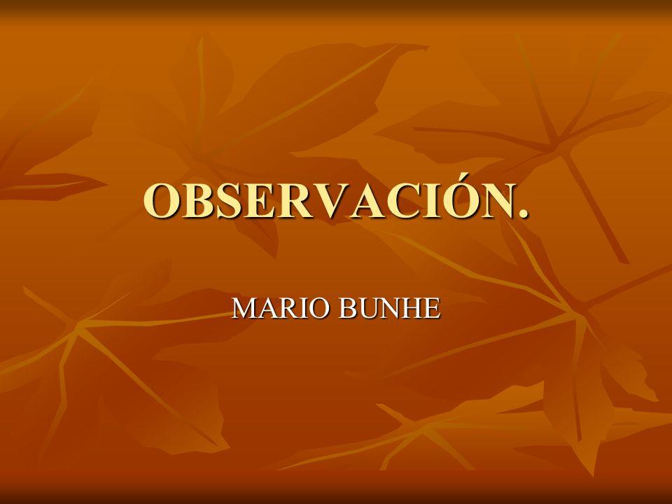 OBSERVACIÓN. MARIO BUNHE