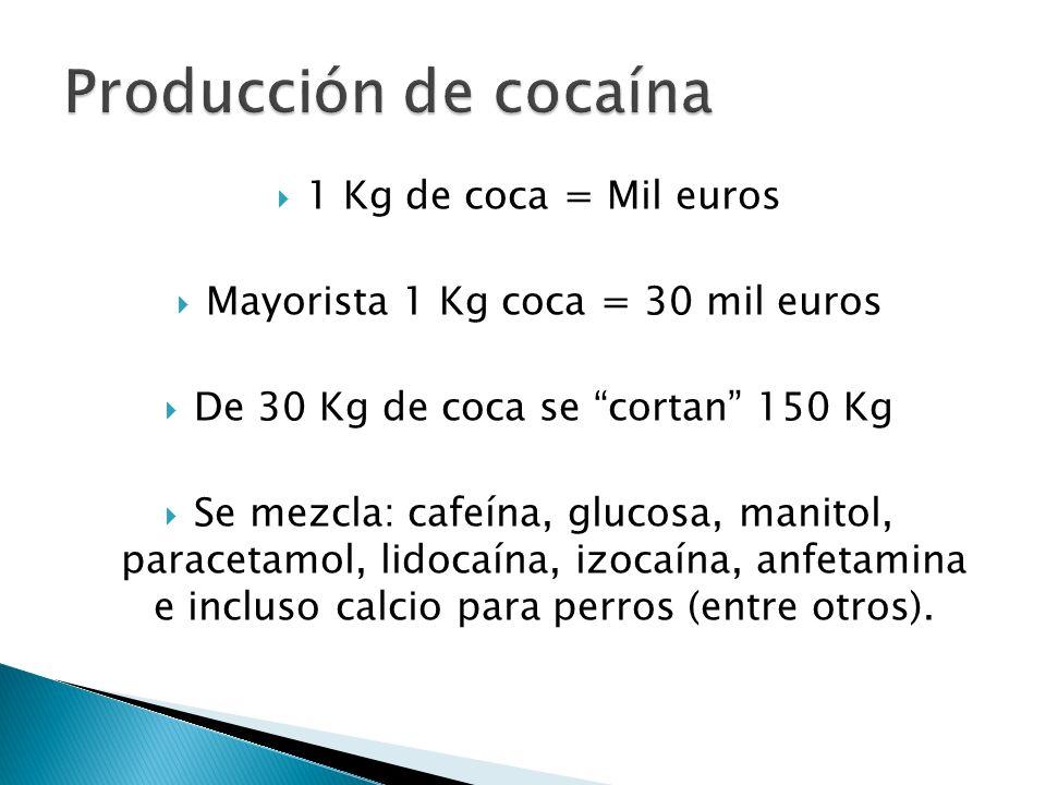 1 Kg de coca = Mil euros Mayorista 1 Kg coca = 30 mil euros De 30 Kg de coca se cortan 150 Kg Se mezcla: cafeína, glucosa, manitol, paracetamol, lidoc