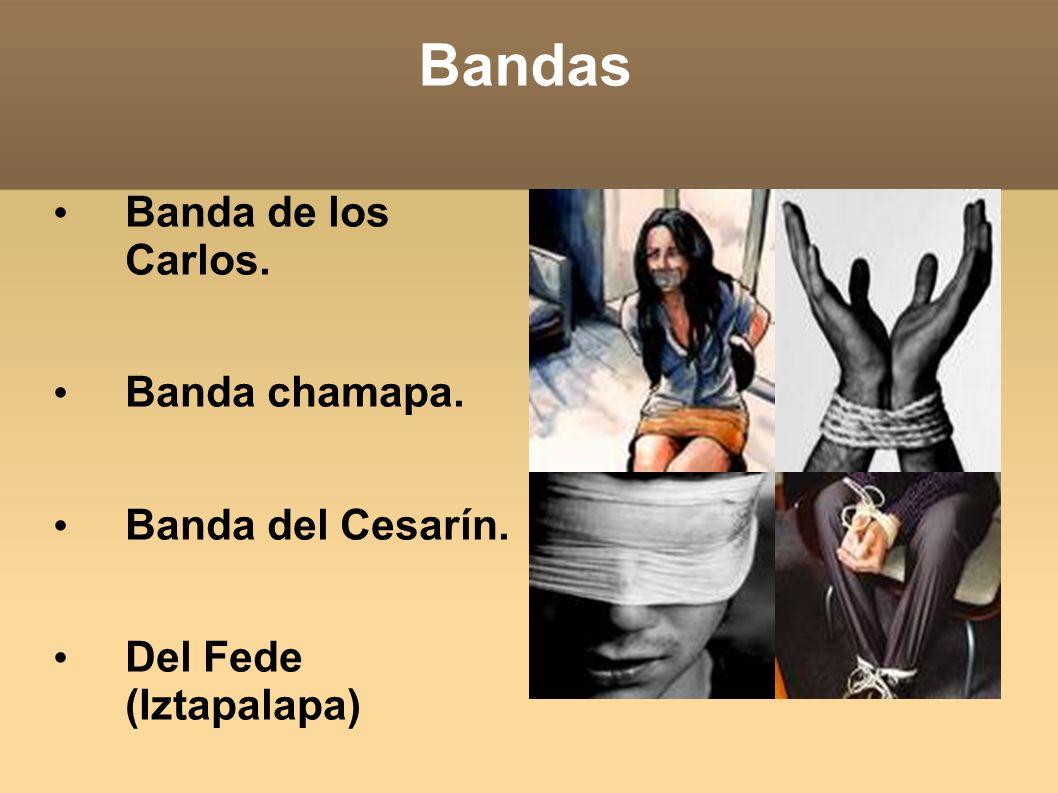 Bandas Banda de los Carlos. Banda chamapa. Banda del Cesarín. Del Fede (Iztapalapa)
