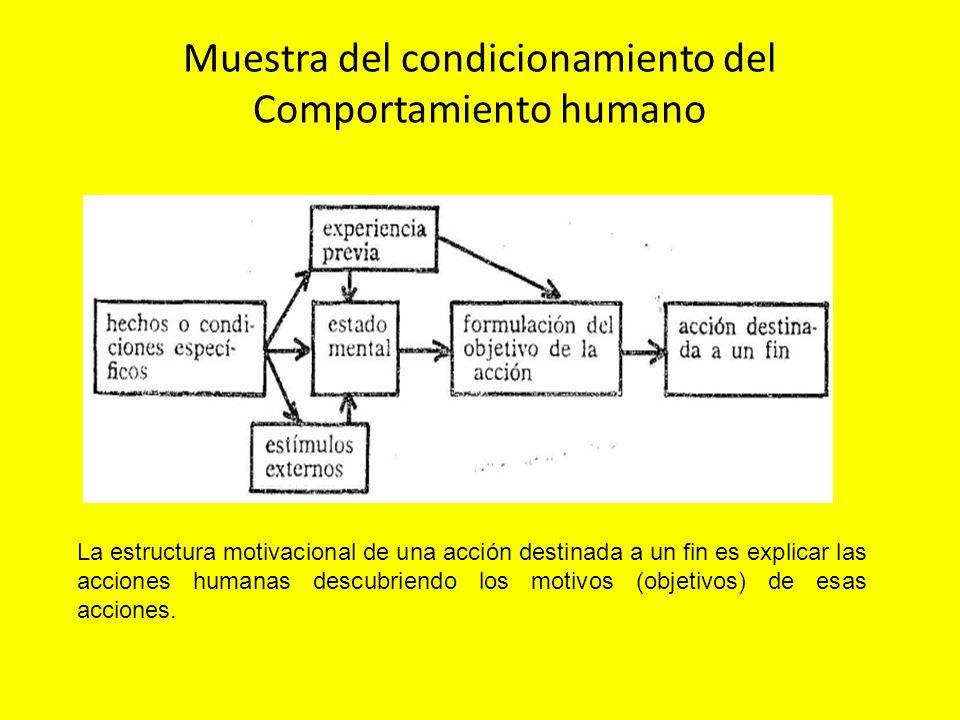 Muestra del condicionamiento del Comportamiento humano La estructura motivacional de una acción destinada a un fin es explicar las acciones humanas de