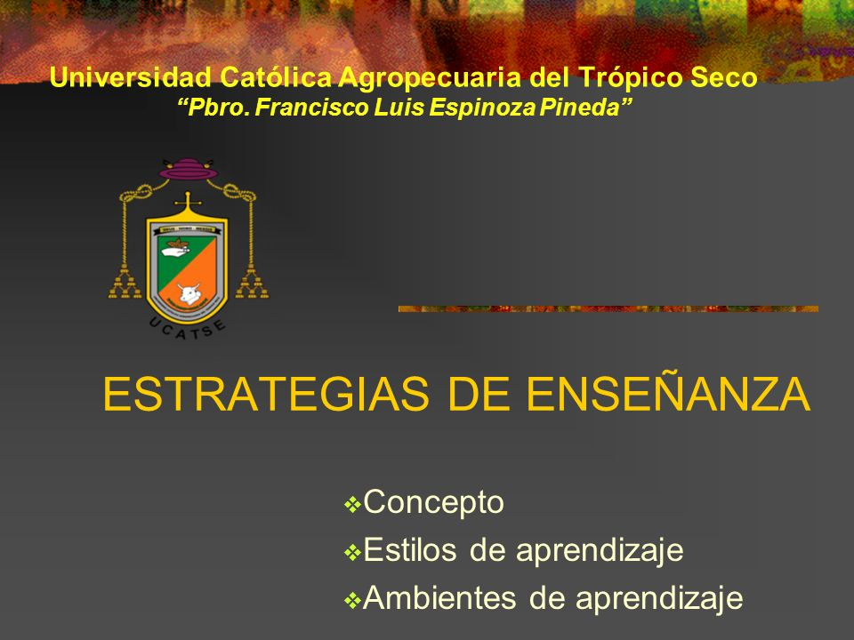 ESTRATEGIAS DE ENSEÑANZA Concepto Estilos de aprendizaje Ambientes de aprendizaje Universidad Católica Agropecuaria del Trópico Seco Pbro. Francisco L
