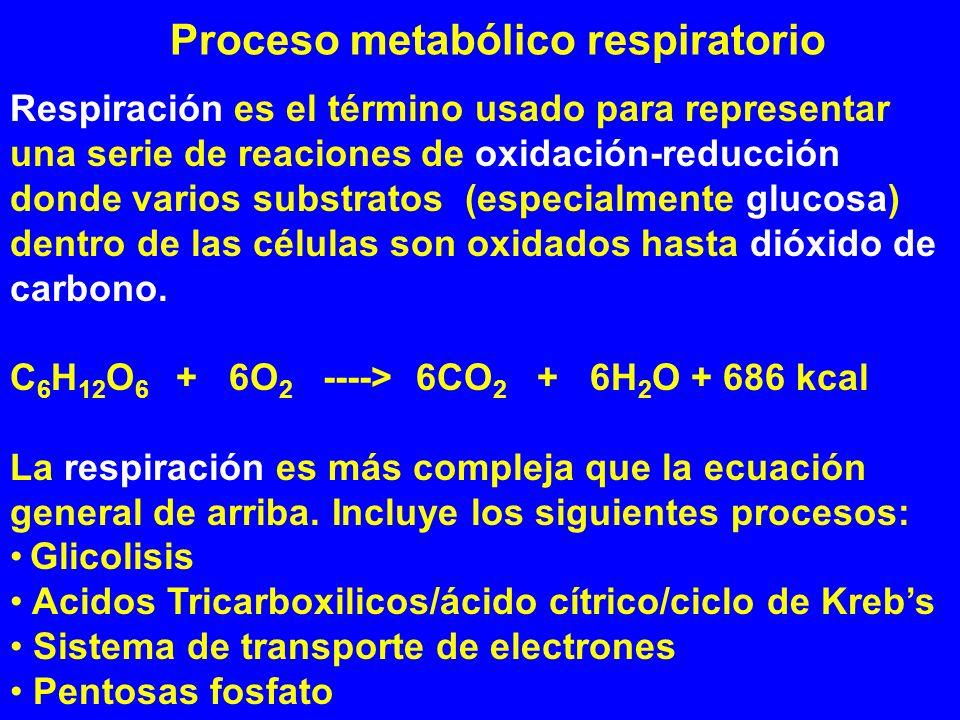 Proceso metabólico respiratorio Respiración es el término usado para representar una serie de reaciones de oxidación-reducción donde varios substratos