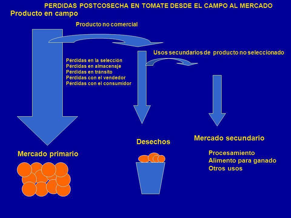 Producto en campo Producto no comercial Usos secundarios de producto no seleccionado Mercado primario Desechos Mercado secundario Pérdidas en la selec
