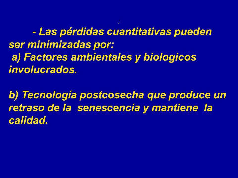 : - Las pérdidas cuantitativas pueden ser minimizadas por: a) Factores ambientales y biologicos involucrados. b) Tecnología postcosecha que produce un