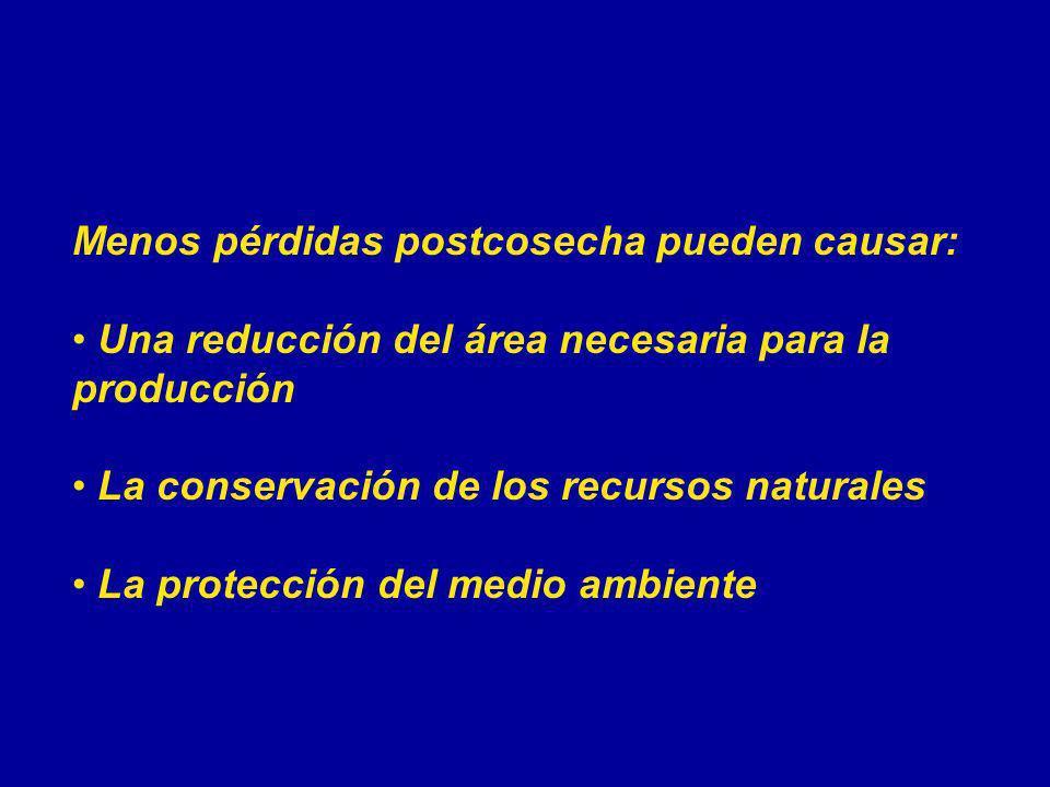 Menos pérdidas postcosecha pueden causar: Una reducción del área necesaria para la producción La conservación de los recursos naturales La protección
