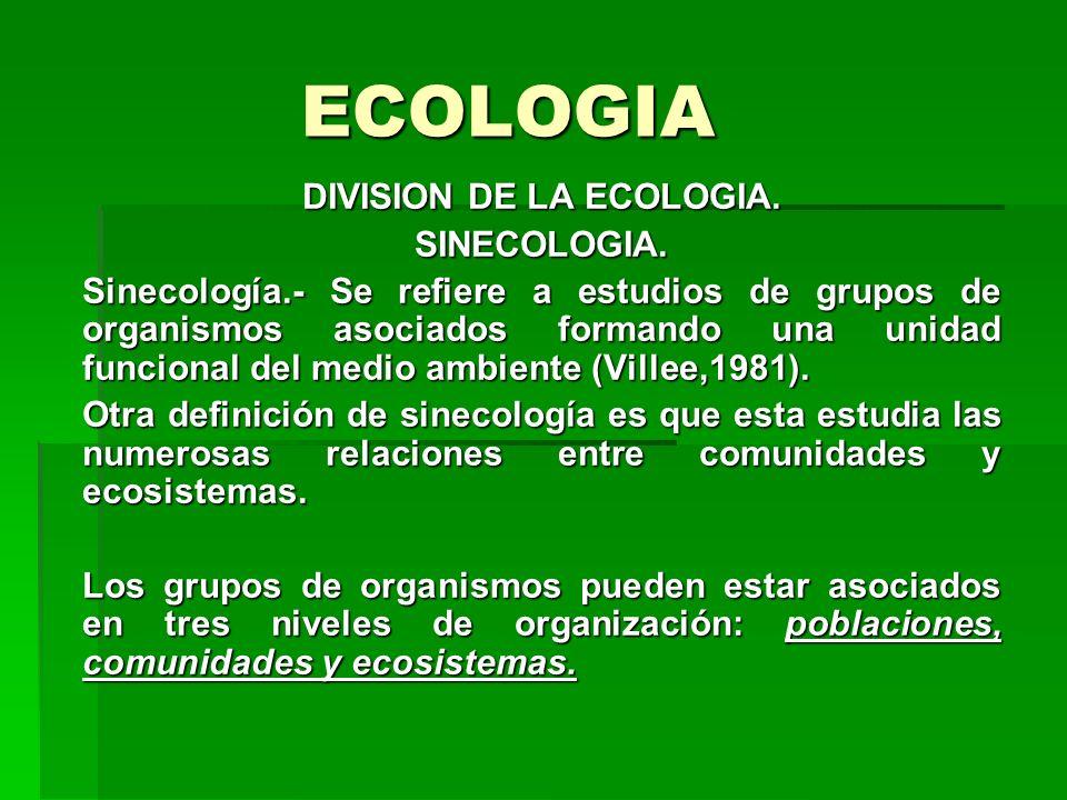 ECOLOGIA DIVISION DE LA ECOLOGIA. SINECOLOGIA. Sinecología.- Se refiere a estudios de grupos de organismos asociados formando una unidad funcional del