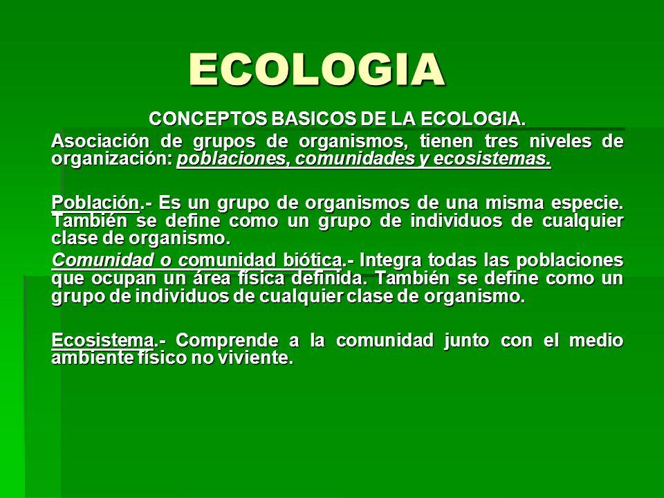 ECOLOGIA CONCEPTOS BASICOS DE LA ECOLOGIA. Asociación de grupos de organismos, tienen tres niveles de organización: poblaciones, comunidades y ecosist