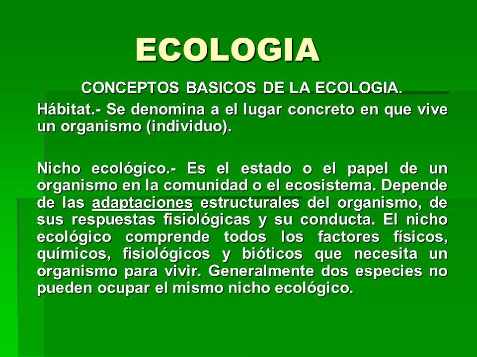 ECOLOGIA CONCEPTOS BASICOS DE LA ECOLOGIA. Hábitat.- Se denomina a el lugar concreto en que vive un organismo (individuo). Nicho ecológico.- Es el est