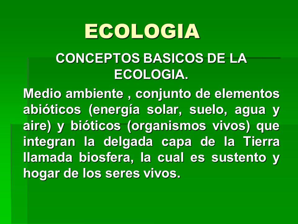 ECOLOGIA CONCEPTOS BASICOS DE LA ECOLOGIA. Medio ambiente, conjunto de elementos abióticos (energía solar, suelo, agua y aire) y bióticos (organismos