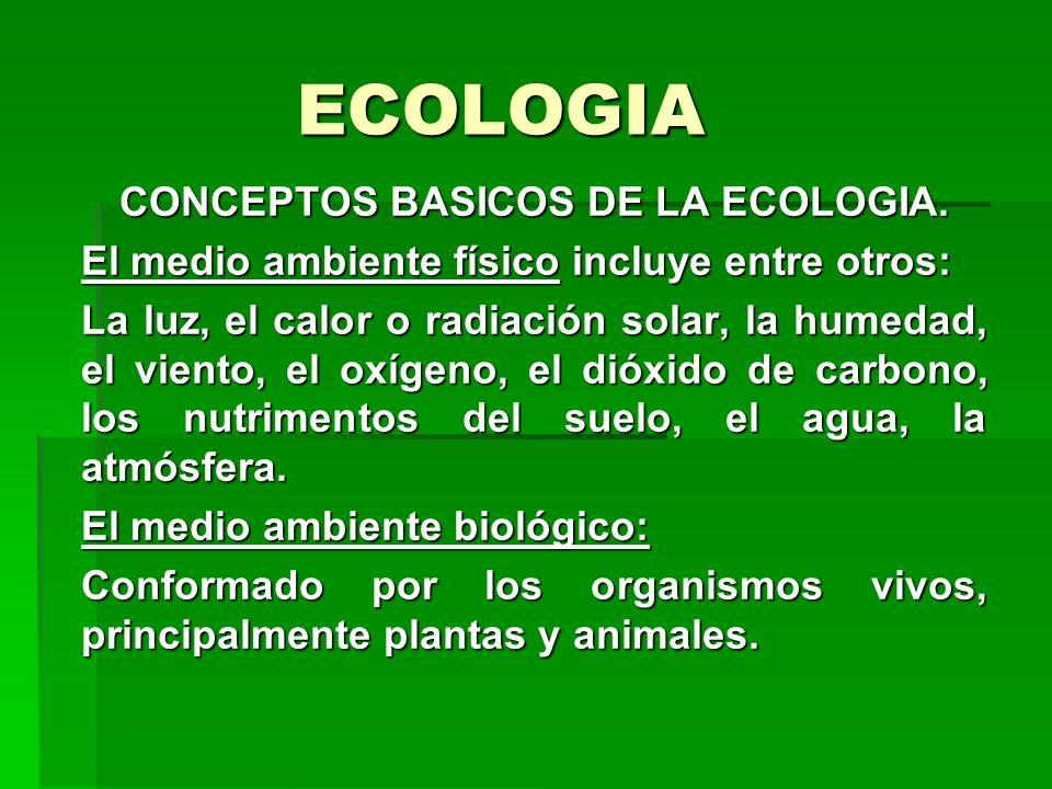 ECOLOGIA CONCEPTOS BASICOS DE LA ECOLOGIA. El medio ambiente físico incluye entre otros: La luz, el calor o radiación solar, la humedad, el viento, el