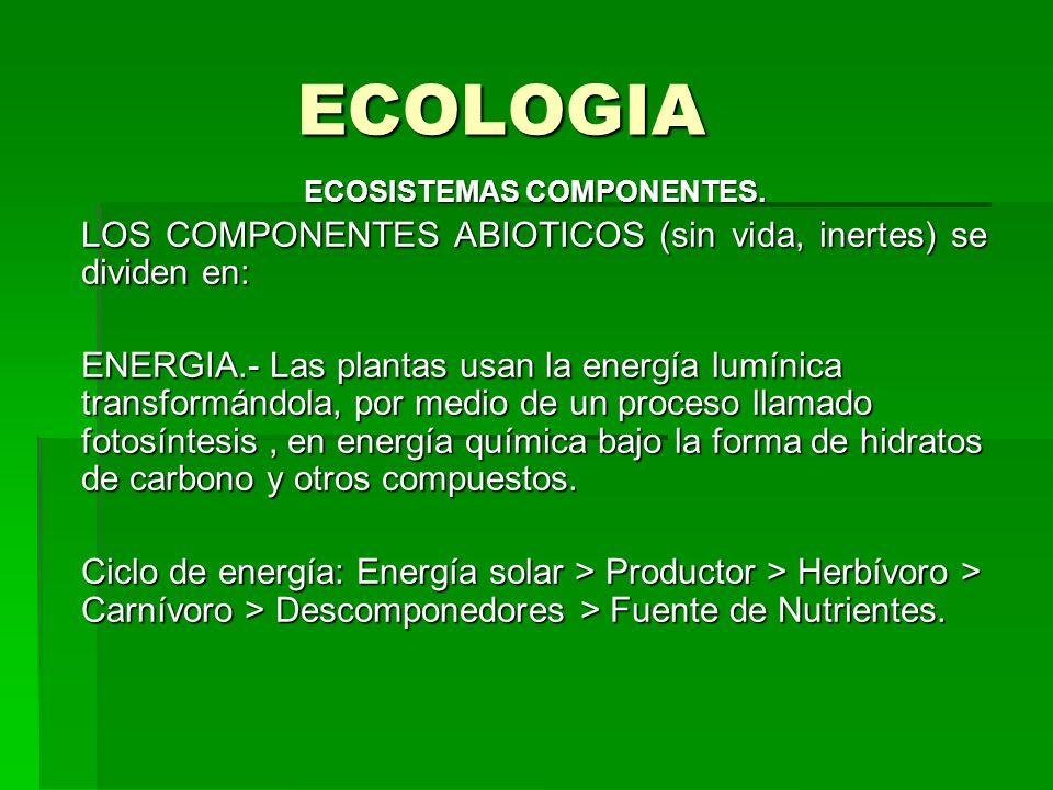 ECOLOGIA ECOSISTEMAS COMPONENTES. LOS COMPONENTES ABIOTICOS (sin vida, inertes) se dividen en: ENERGIA.- Las plantas usan la energía lumínica transfor