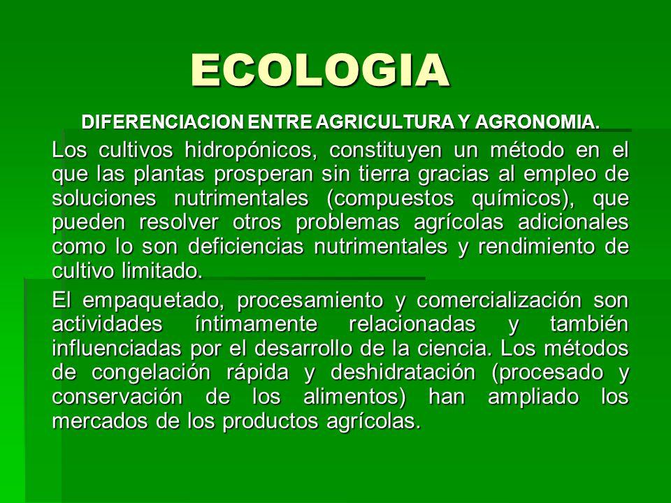 ECOLOGIA DIFERENCIACION ENTRE AGRICULTURA Y AGRONOMIA. Los cultivos hidropónicos, constituyen un método en el que las plantas prosperan sin tierra gra