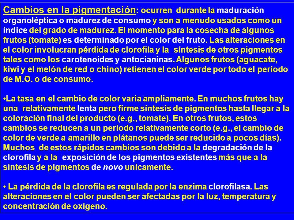 Cambios en la pigmentación : ocurren durante la maduración organoléptica o madurez de consumo y son a menudo usados como un índice del grado de madure