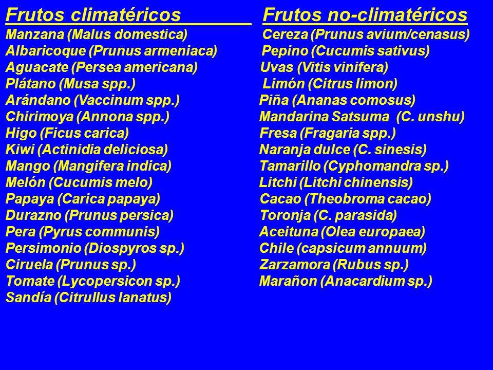 Frutos climatéricos Frutos no-climatéricos Manzana (Malus domestica) Cereza (Prunus avium/cenasus) Albaricoque (Prunus armeniaca) Pepino (Cucumis sati