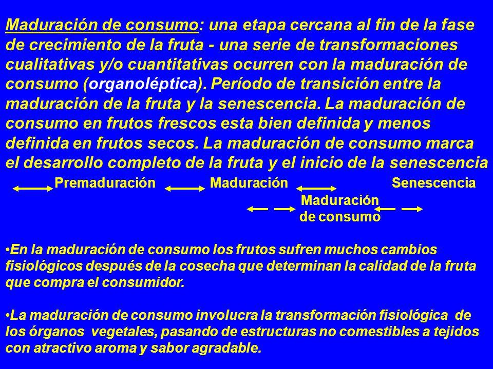 Maduración de consumo: una etapa cercana al fin de la fase de crecimiento de la fruta - una serie de transformaciones cualitativas y/o cuantitativas o
