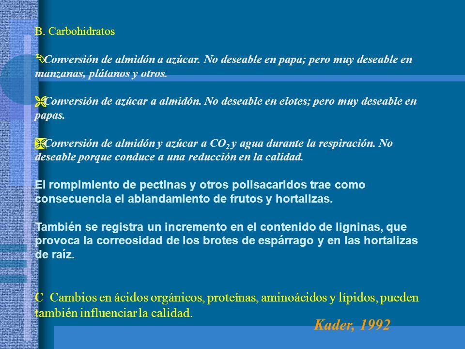 B. Carbohidratos Ê Conversión de almidón a azúcar. No deseable en papa; pero muy deseable en manzanas, plátanos y otros. Ë Conversión de azúcar a almi