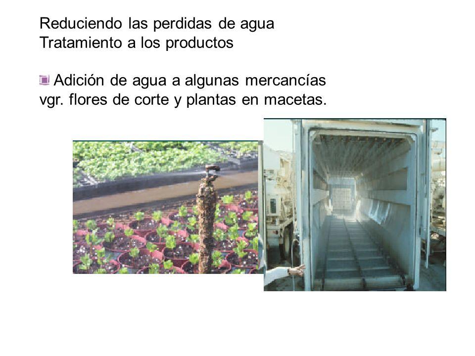 Reduciendo las perdidas de agua Tratamiento a los productos Adición de agua a algunas mercancías vgr. flores de corte y plantas en macetas.