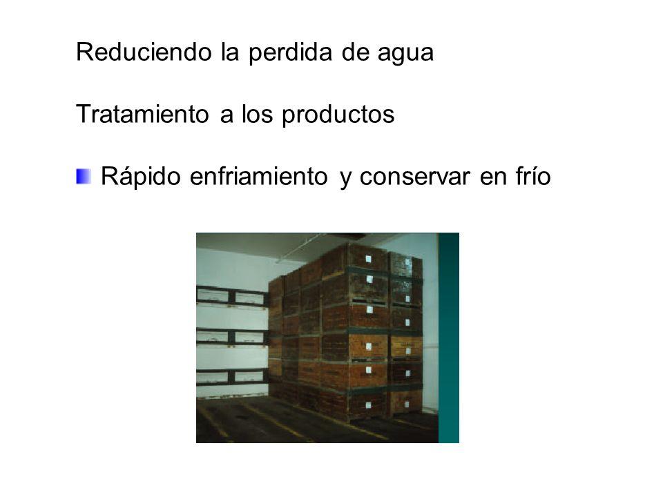 Reduciendo la perdida de agua Tratamiento a los productos Rápido enfriamiento y conservar en frío