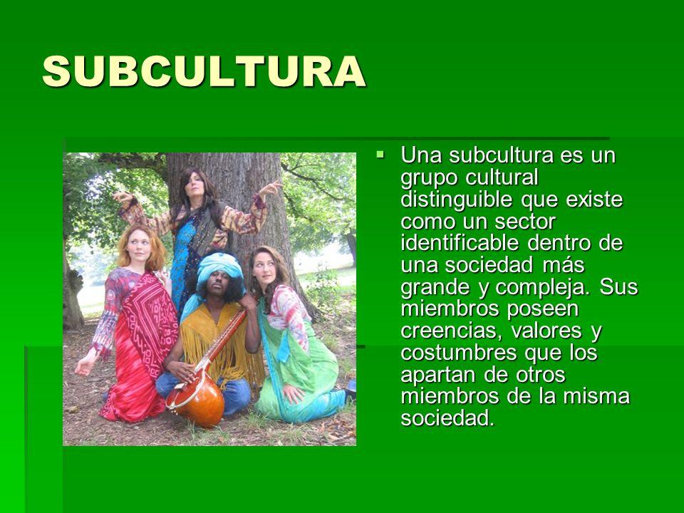 SUBCULTURA Una subcultura es un grupo cultural distinguible que existe como un sector identificable dentro de una sociedad más grande y compleja.