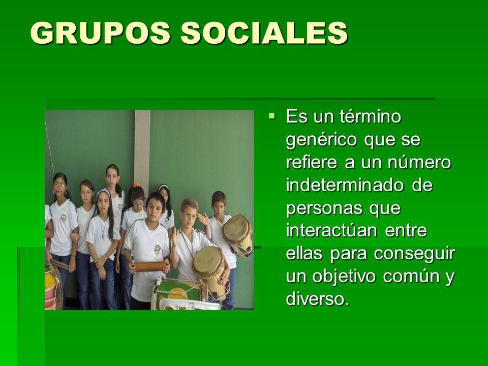 GRUPOS SOCIALES Es un término genérico que se refiere a un número indeterminado de personas que interactúan entre ellas para conseguir un objetivo común y diverso.