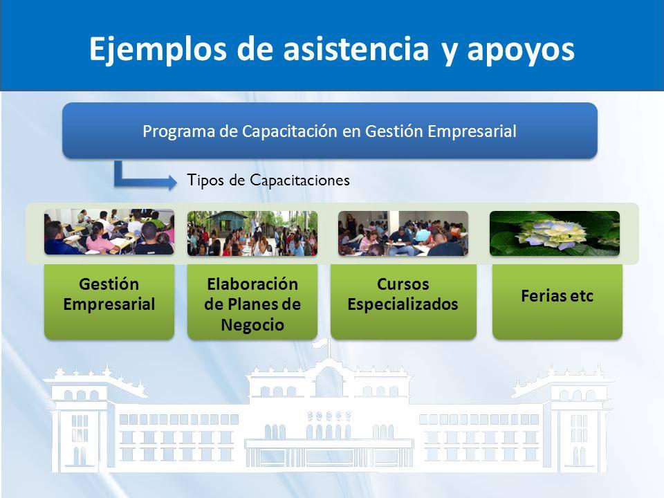 Ejemplos de asistencia y apoyos Programa de Capacitación en Gestión Empresarial Gestión Empresarial Elaboración de Planes de Negocio Cursos Especializ