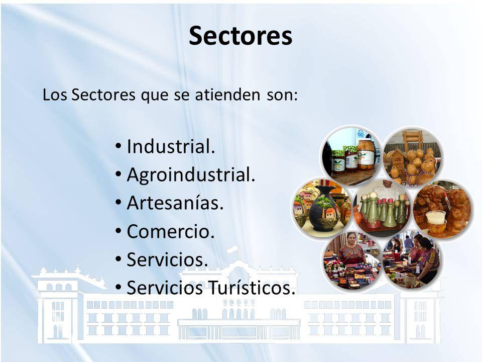Sectores Los Sectores que se atienden son: Industrial. Agroindustrial. Artesanías. Comercio. Servicios. Servicios Turísticos.