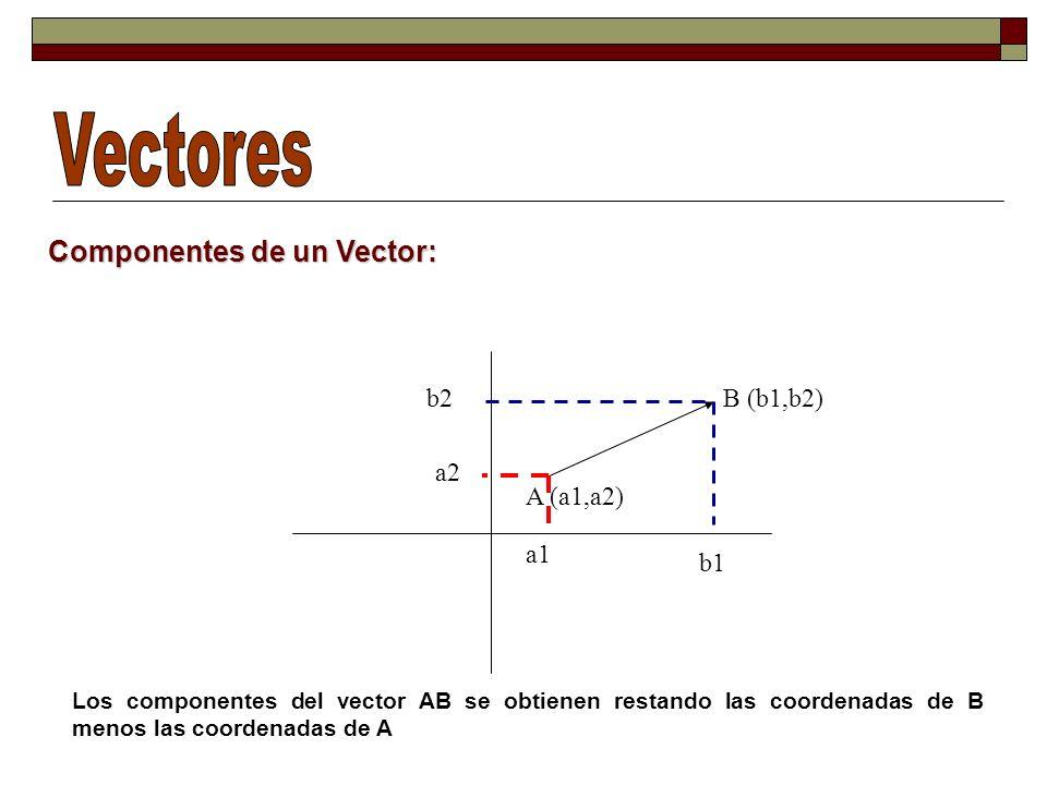 Componentes de un Vector: A (a1,a2) B (b1,b2) b1 b2 a2 a1 Los componentes del vector AB se obtienen restando las coordenadas de B menos las coordenadas de A