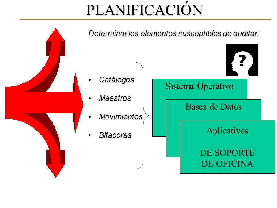 PLANIFICACIÓN Determinar los elementos susceptibles de auditar: CatálogosCatálogos MaestrosMaestros MovimientosMovimientos BitácorasBitácoras Sistema