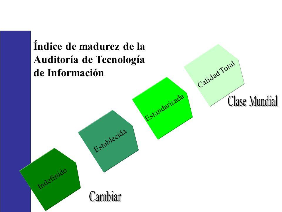 Establecida Estandarizada Indefinido Calidad Total Índice de madurez de la Auditoría de Tecnología de Información